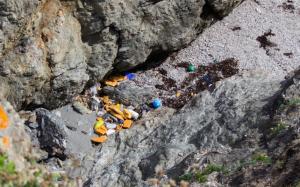 Premier expériment - Nettoyage des plages - AVANT